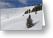 "\""colorado Resort\\\"" Greeting Cards - Vail Back Bowls Panorama - Colorado Greeting Card by Brendan Reals"