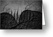 Window Prints Posters Greeting Cards - Valley Of Sticks Greeting Card by Jerry Cordeiro