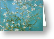 Oil On Canvas Painting Greeting Cards - Van Gogh Blossoming Almond Tree Greeting Card by Vincent Van Gogh