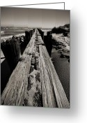 Sepia Greeting Cards - Vanishing Point Folly Beach Greeting Card by Dustin K Ryan