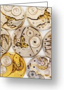 Large Clock Greeting Cards - Variety Of Watches Striped To Parts Greeting Card by Tetra Images