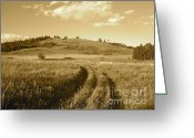 Driveways Greeting Cards - Velvet Road Greeting Card by KD Johnson