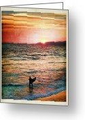 Boogie Board Greeting Cards - Venice Beach Boogie Greeting Card by Tammy Wetzel