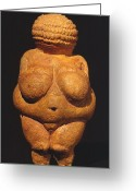 Artifact Greeting Cards - Venus Of Willendorf Greeting Card by Granger