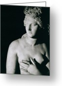 Nude Bath Greeting Cards - Venus Pudica  Greeting Card by Unknown