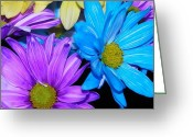 Fine_art Greeting Cards - Very Colorful Flowers Greeting Card by Christy Patino