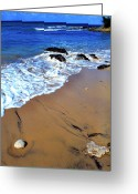 Puerto Rico Greeting Cards - Vieques Greeting Card by Thomas R Fletcher