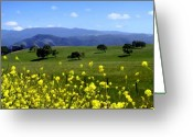 California Greeting Cards - View from Highway 154 Greeting Card by Kurt Van Wagner