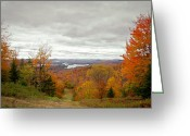 Fall Colors Greeting Cards - View From McCauley Mountain III Greeting Card by David Patterson