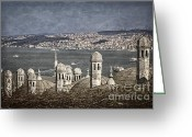 Marmara Greeting Cards - View from the Backyard Greeting Card by Joan Carroll