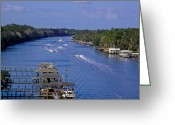 Florida Bridge Greeting Cards - View From The Bridge of Lions Greeting Card by DigiArt Diaries by Vicky Browning