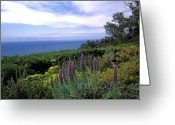 Clouds Framed Prints Greeting Cards - View from Ventana Big Sur Greeting Card by Kathy Yates
