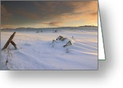 Covering Greeting Cards - View Of Landscape In Winte Greeting Card by Sigurbjorn