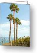 Places Greeting Cards - View Of Marina Greeting Card by Ben and Raisa Gertsberg