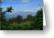 Tropical Island Greeting Cards - View of Mauna Kahalewai West Maui from Keokea on the western slopes of Haleakala Maui Hawaii Greeting Card by Sharon Mau
