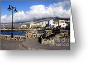 Canary Greeting Cards - View of Puerto de la Cruz from Plaza de Europa Greeting Card by Fabrizio Troiani