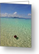 Tropical Climate Greeting Cards - View Of Semporna Greeting Card by By Toonman