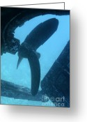 Misfortune Greeting Cards - View of the propeller and rudder of a wrecked ship underwater Greeting Card by Sami Sarkis