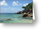 All Tree Greeting Cards - View Of The Sea And A Rocky Coastline Greeting Card by Caspar Benson