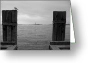 Cities Greeting Cards - View Toward Statue Of Liberty In Nyc Greeting Card by Utopia Concepts