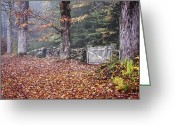 Cemetery Gate Greeting Cards - Village Cemetery Gate Greeting Card by Tom Singleton
