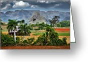 Colonial Scene Greeting Cards - Vinales. Pinar del Rio. Cuba Greeting Card by Juan Carlos Ferro Duque