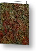 Horns Greeting Cards - Vines And Twines  Greeting Card by Jerry Cordeiro