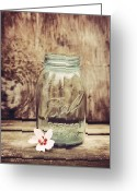 Mason Greeting Cards - Vintage Ball Mason Jar Greeting Card by Terry DeLuco