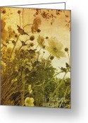 Sun Burst Mixed Media Greeting Cards - Vintage flowers Greeting Card by Christophe ROLLAND