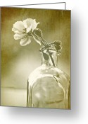 Black And White Floral Greeting Cards - Vintage Geranium Greeting Card by Amy Neal