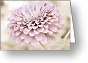 Flower Blossom Greeting Cards - Vintage Pink Greeting Card by Julie Palencia