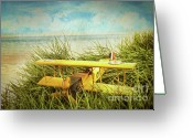 Fun Greeting Cards - Vintage toy plane in tall grass at the beach Greeting Card by Sandra Cunningham