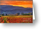 Country Prints Greeting Cards - Vintners Sunset Greeting Card by Mars Lasar