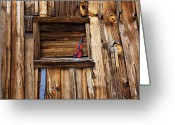 Ghost Town Greeting Cards - Viola in window Greeting Card by Garry Gay