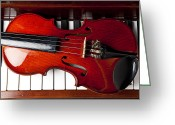 Pianos Greeting Cards - Viola on piano keys Greeting Card by Garry Gay