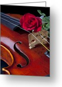 Mac Miller Greeting Cards - Violin and Red Rose Greeting Card by M K  Miller