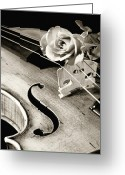 Mac Miller Greeting Cards - Violin and Rose Greeting Card by M K  Miller