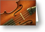 String Instrument Greeting Cards - Violin Greeting Card by Brandon Goldman