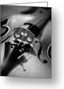 Arts Culture And Entertainment Greeting Cards - Violin Greeting Card by Danielle Donders - Mothership Photography