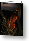 Luz Greeting Cards - Violin in the forest Greeting Card by Fernando Alvarez