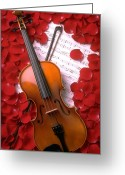 Red Rose Greeting Cards - Violin on sheet music with rose petals Greeting Card by Garry Gay