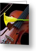 Calla Lilies Greeting Cards - Violin with yellow calla lily Greeting Card by Garry Gay