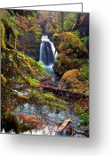 Foilage Greeting Cards - Virgin Greek Falls Greeting Card by Ed Boudreau