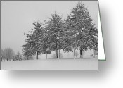 Winter Trees Greeting Cards - Virginia Snow Greeting Card by Todd Hostetter