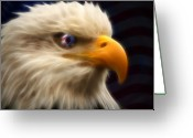 Bald Eagle Digital Art Greeting Cards - Vision of Freedom II Greeting Card by Ricky Barnard