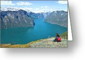 Lake Photographs Greeting Cards - Visitor at Aurlandsfjord Greeting Card by Heiko Koehrer-Wagner