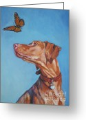 Hungarian Pointer Greeting Cards - Vizsla and the butterfly Greeting Card by Lee Ann Shepard