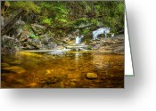 Swimming Hole Greeting Cards - Wading Pool Greeting Card by Bill  Wakeley