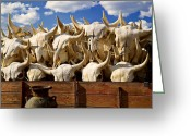 Bison Greeting Cards - Wagon full of animal skulls Greeting Card by Garry Gay