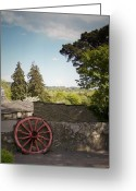 County Clare Greeting Cards - Wagon Wheel County Clare Ireland Greeting Card by Teresa Mucha